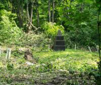 Большая братская могила в лесу
