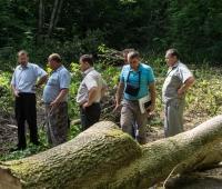 Осмотр территории большой братской могилы в лесу с.Маневцы