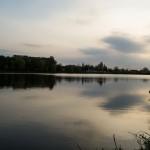 levada_krasilov