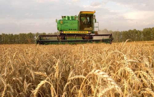 Израиль окажет содействие развитию сельского хозяйства Украины