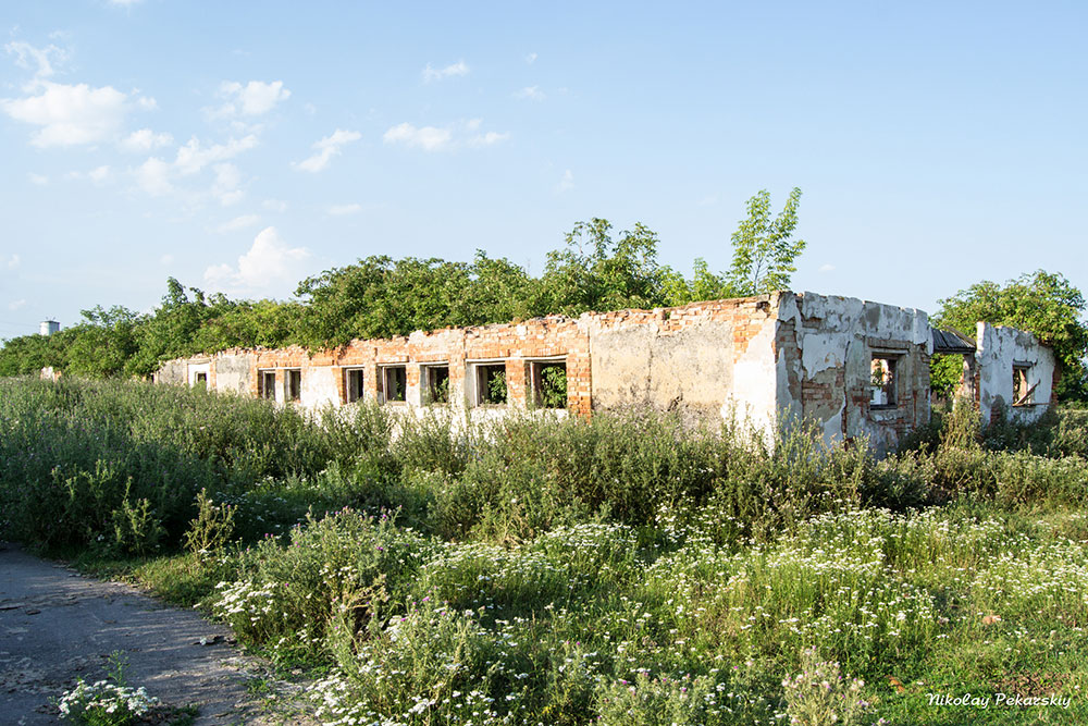 Залишки ферм в с.Великі Орлинці (липень, 2015 р.)