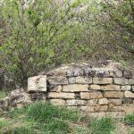 Коровник, сложенный из еврейских надгробий